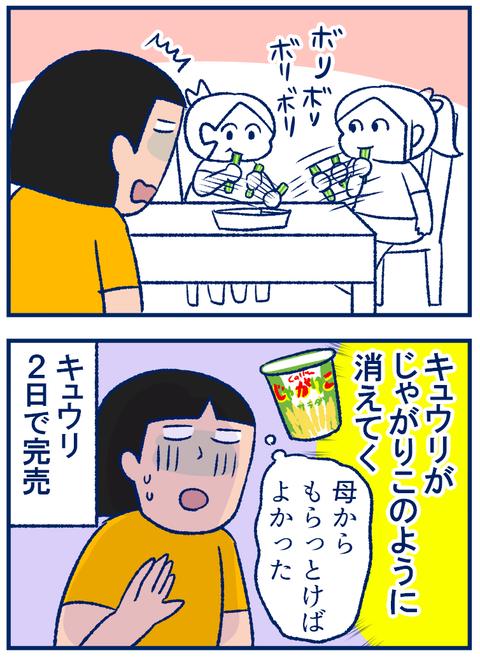 キュウリ04