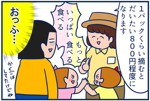 いちご02