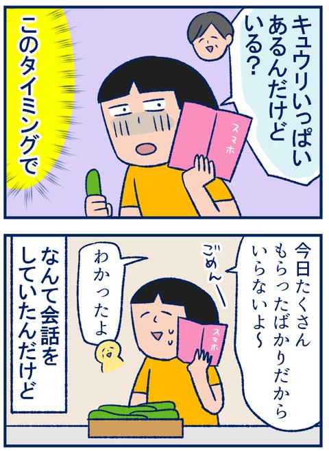 キュウリ02