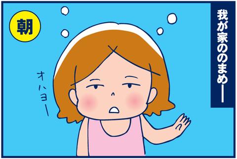 第72話 のまめ整形疑惑【キャミリー更新】