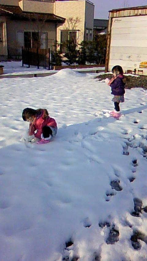 双子を授かっちゃいましたヨ☆-1229散歩04