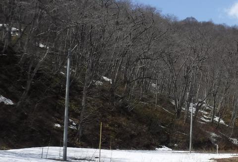 20200403雪の様子1