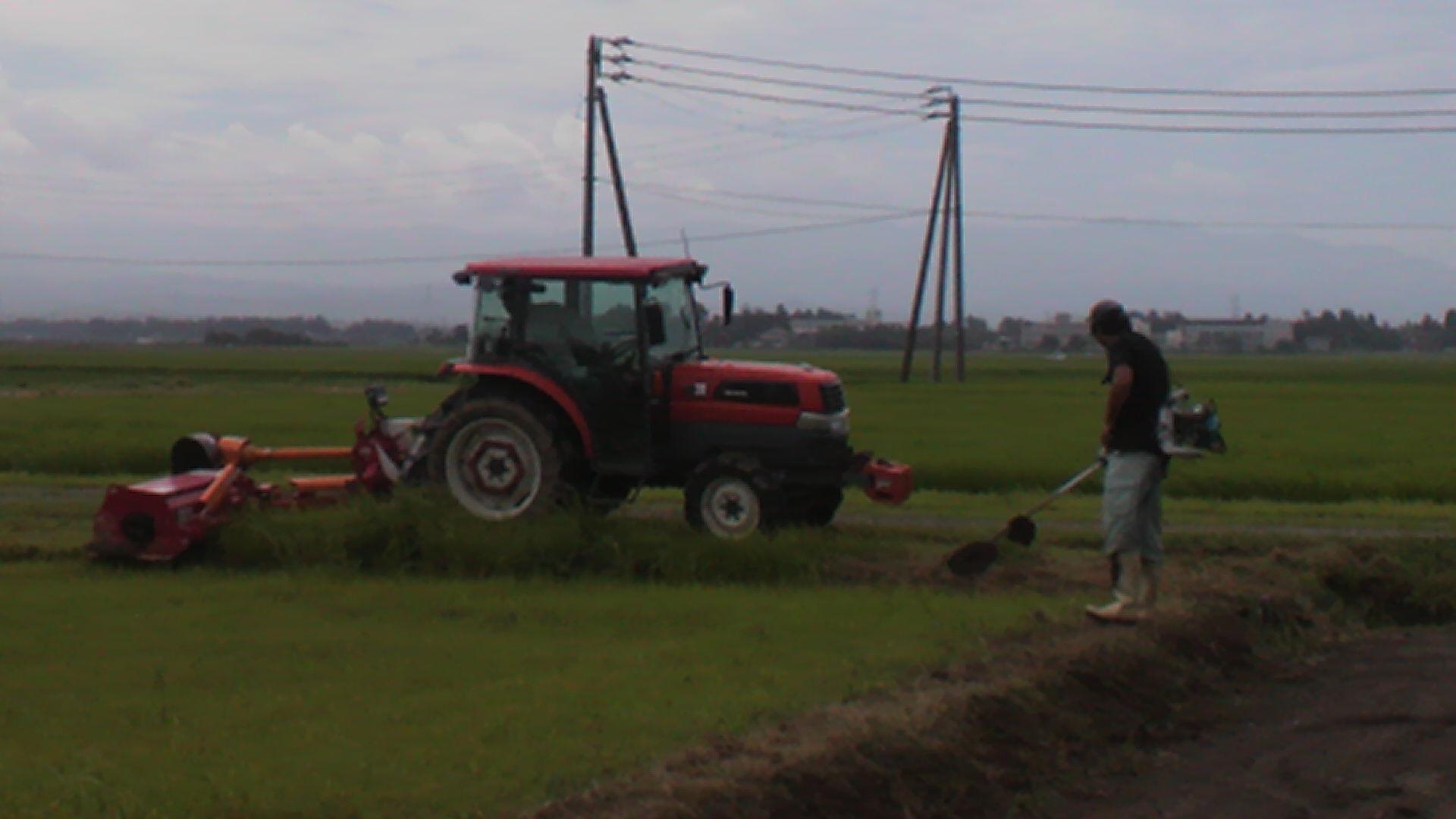 草刈。。風強いし〜〜