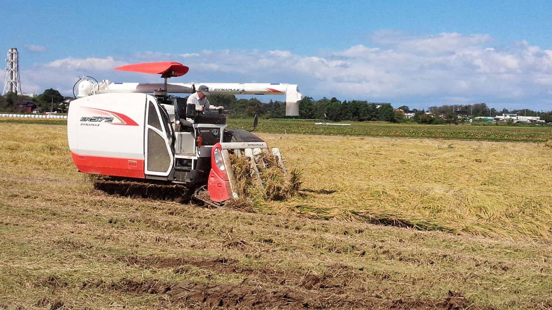 JAS有機栽培コシヒカリ収穫
