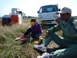 大豆の刈取2