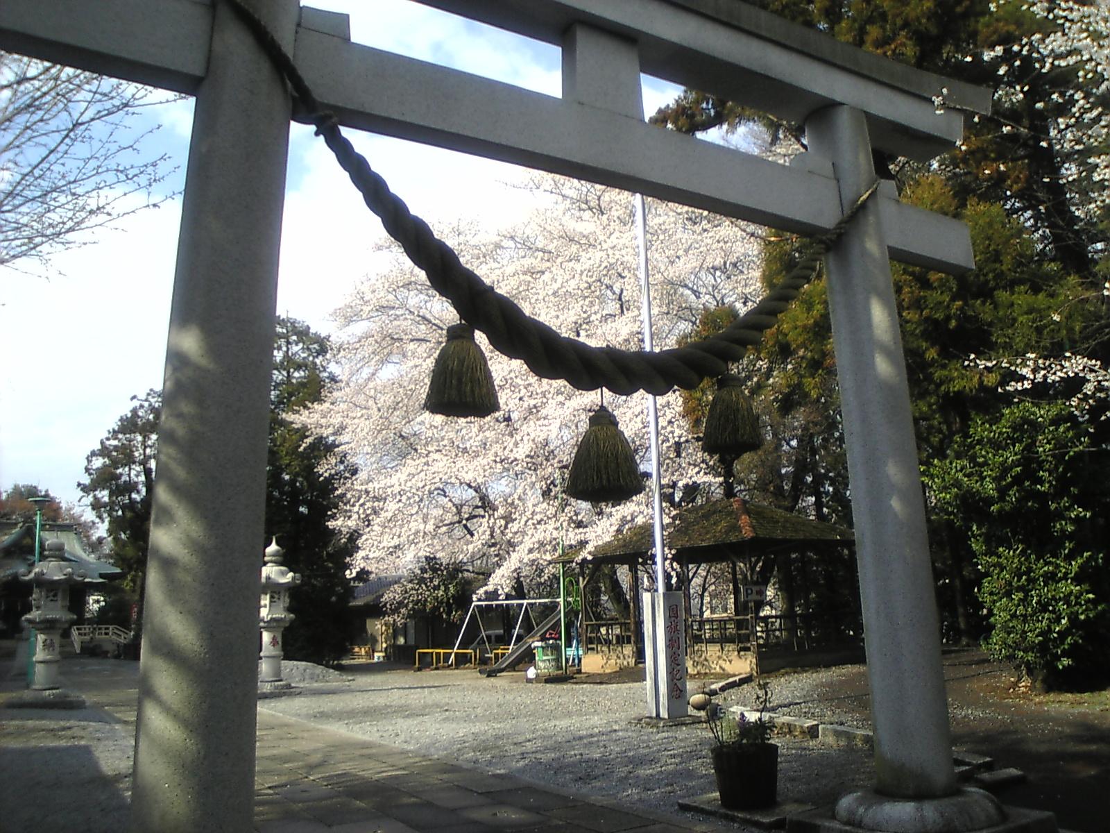 2008 東沼神社1