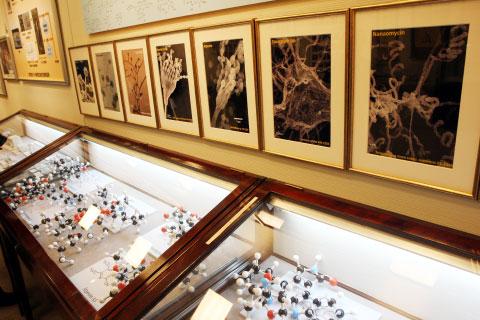 大村記念館微生物