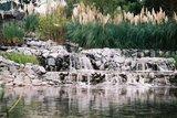 サイスタ池