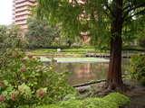 雨上がりの川口自然公園(1)