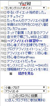 ブログ村_PV