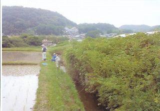 2012田植え_0003