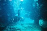 珊瑚の洞窟と人(ニタ洞窟)
