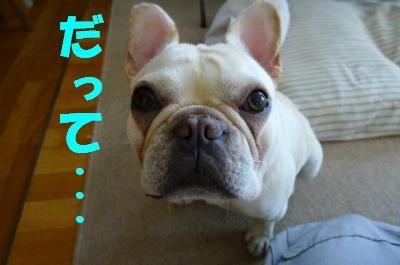 kikiwake4.jpg