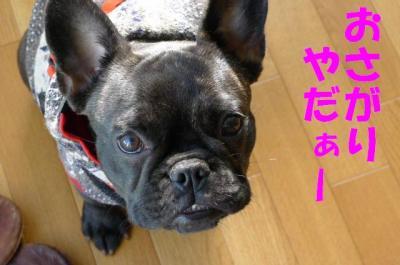 yattomi8.jpg
