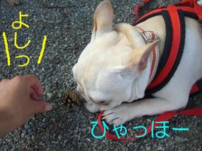 小田原14
