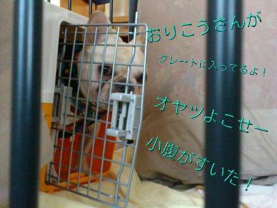 fc2blog_20120806222357a1d.jpg
