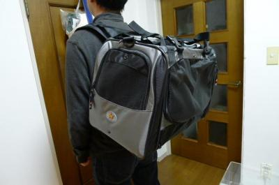 carry5.jpg