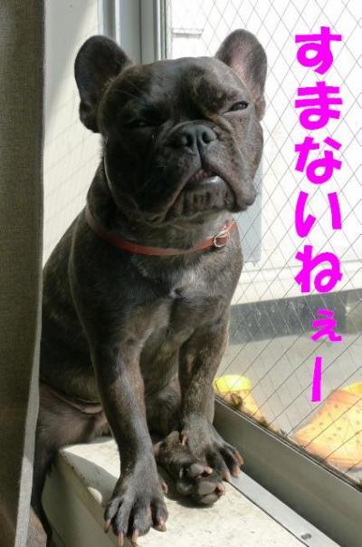 takami2.jpg