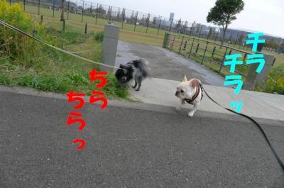 me13.jpg