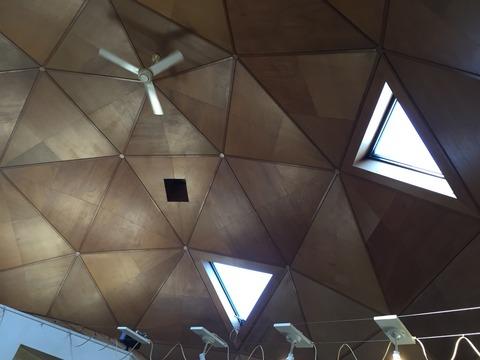『Cafe Leef Green リーフグリーン』店舗の内側天井