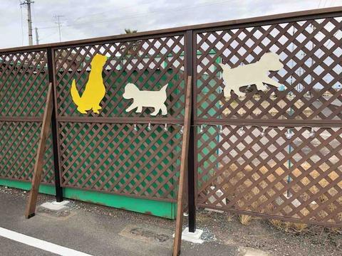『Dog Salon kico(ドッグサロン キコ)』
