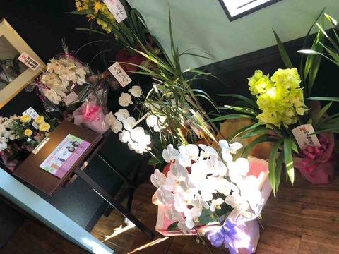 『鈴木珈琲館』開店祝いお花