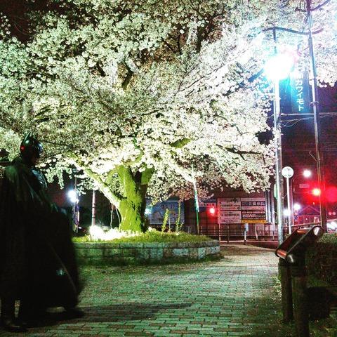 江南市のバットマン