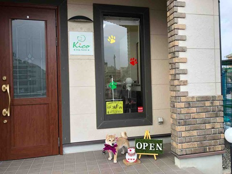 『Dog Salon kico(ドッグサロン キコ)』店舗入口