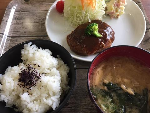 『カフェ ウィステリア』日替わりランチ・煮込みハンバーグ