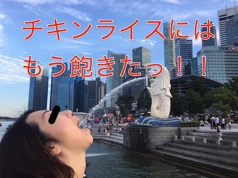 ★シンガポール★_4576-1