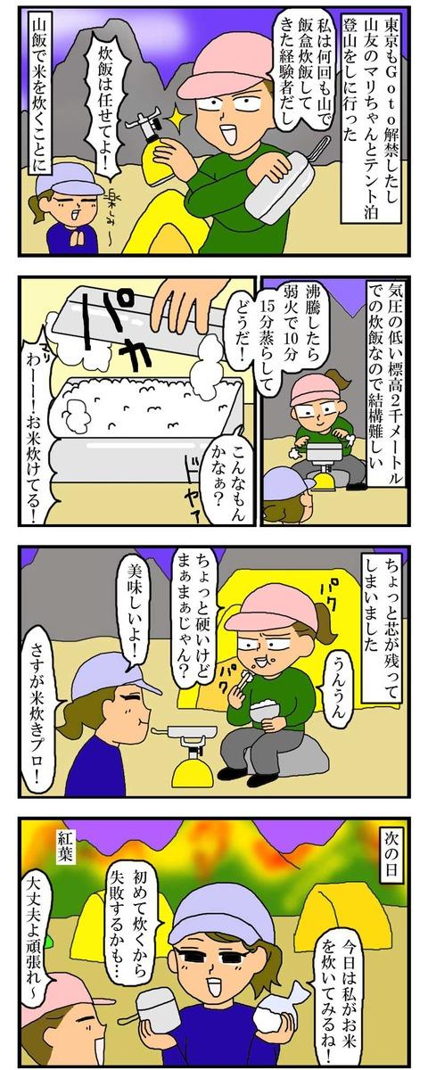 manga295