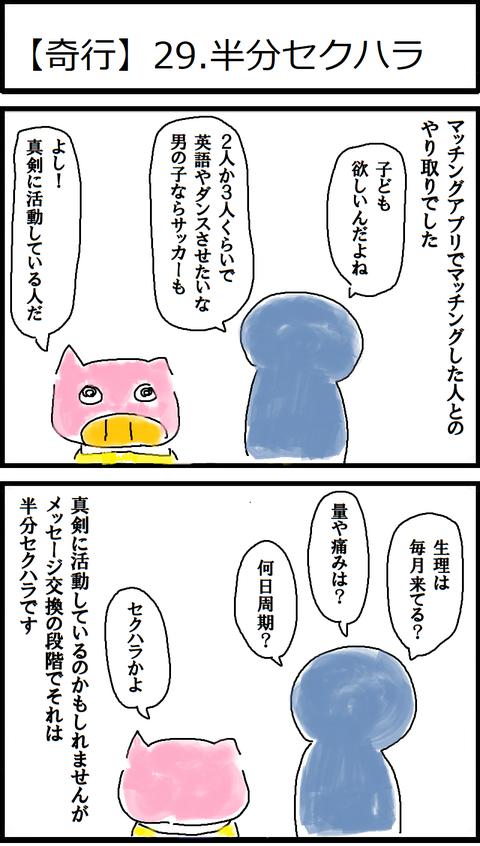 【奇行】29.半分セクハラ