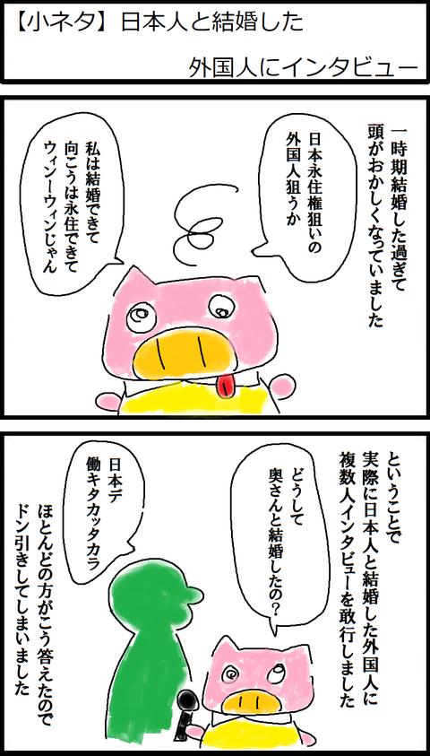 【小ネタ】日本人と結婚した外国人にインタビュー