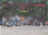 秋川渓谷キャンプ写真