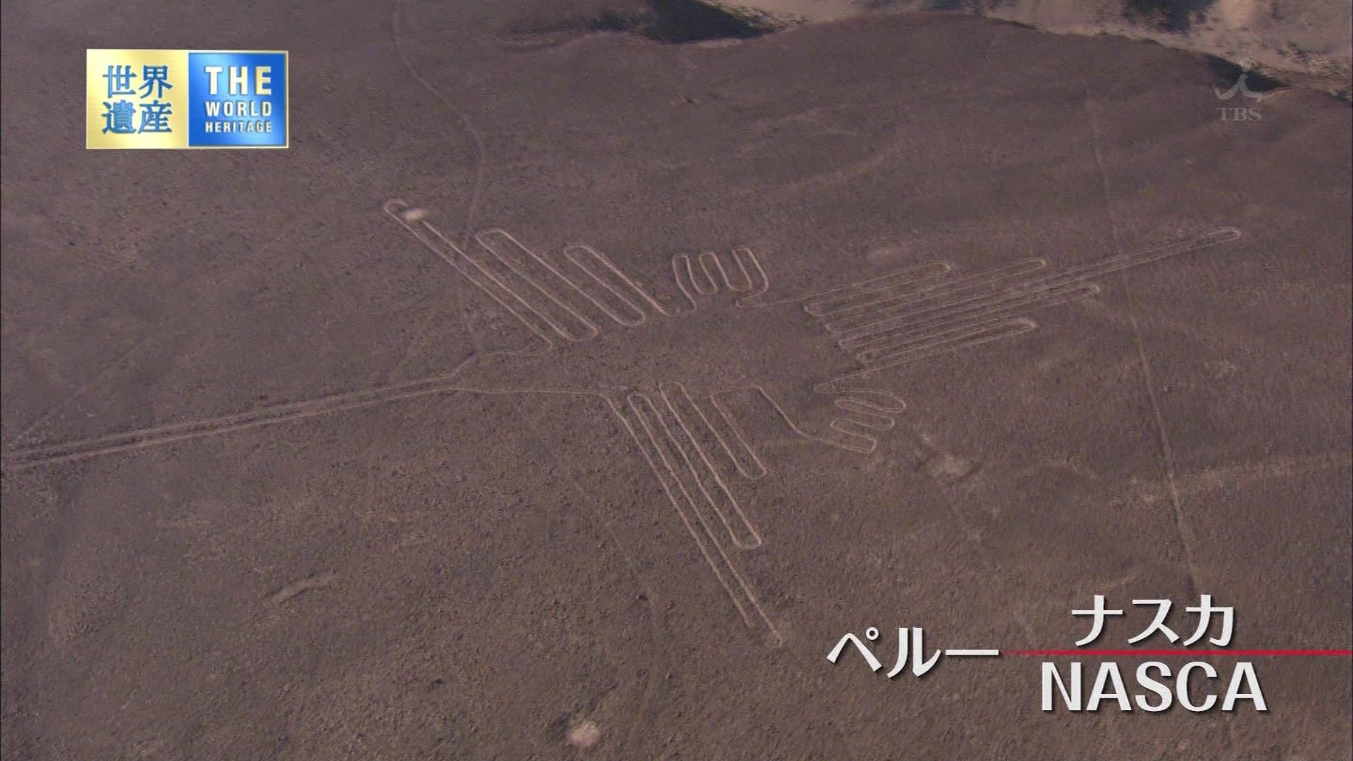 ナスカの地上絵の画像 p1_36