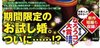 hokuou2_obi_sample