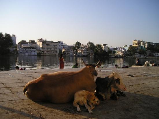 india-341_640
