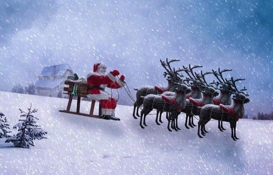 christmas-2930502_1280のコピー-1