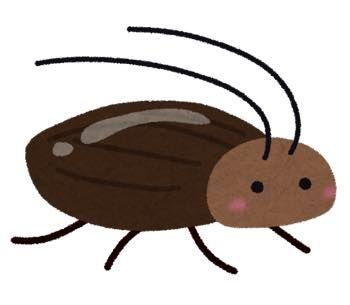 th_bug_gokiburi