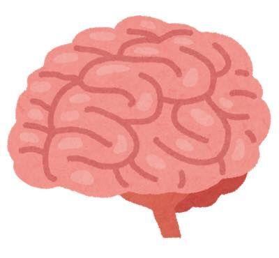 th_body_brain_nou