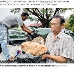 【タイ】価値3億円超か クジラが排出した約100キロの「龍涎香」をタイの漁師が発見