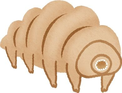 th_tardigrade