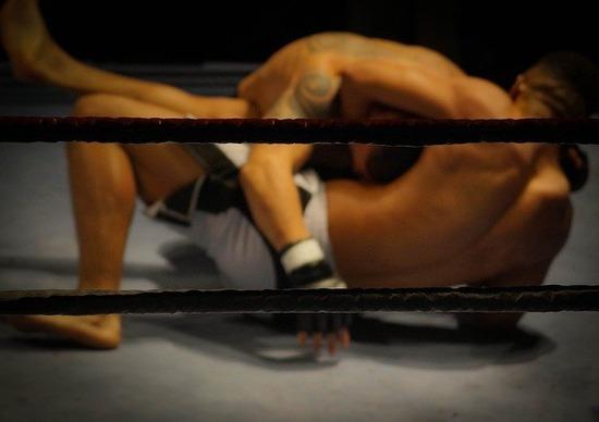 wrestling-384652_640