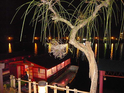 梅の木 日田温泉