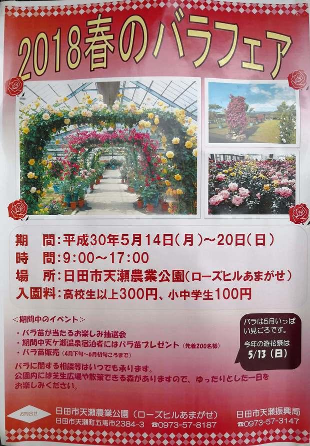 日田市天瀬農業公園(ローズヒルあまがせ)2018春のバラフェア