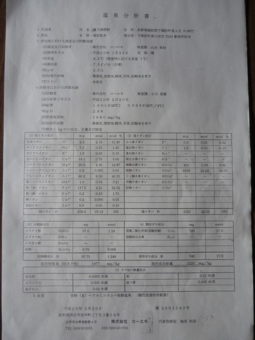 P1010363