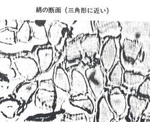 スキャン0010 silk