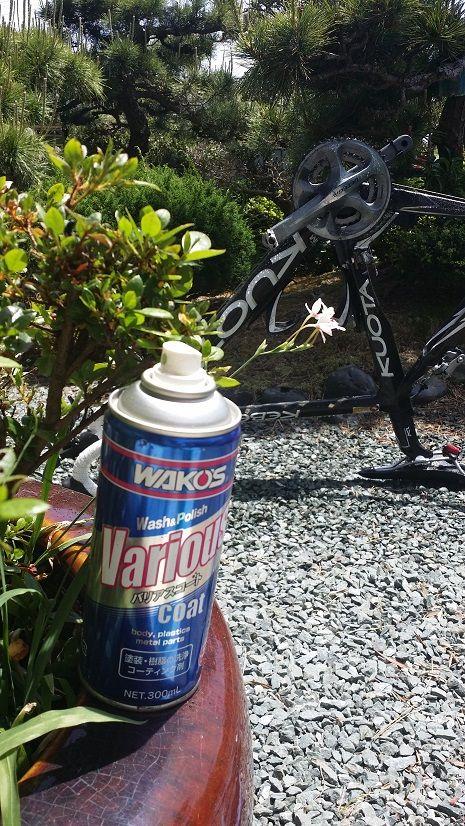 自転車の 自転車 tt 練習 : 息子と嫁は実家に帰っている為 ...
