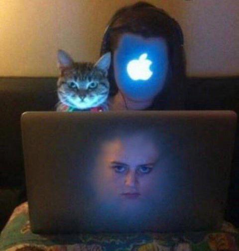 【画像】猫と顔入れ替えて遊んだろwwww