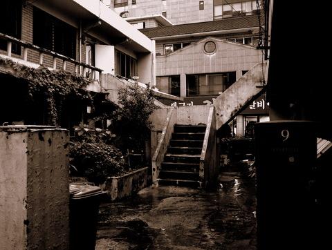 濡れる変則Y字階段